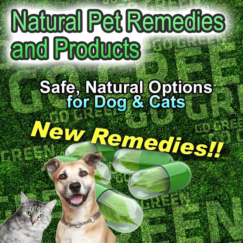 Green Natural Remedies for Pets