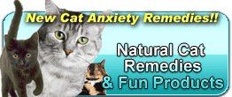 natural cat store products